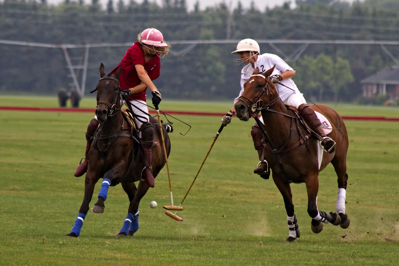 Polo field & players